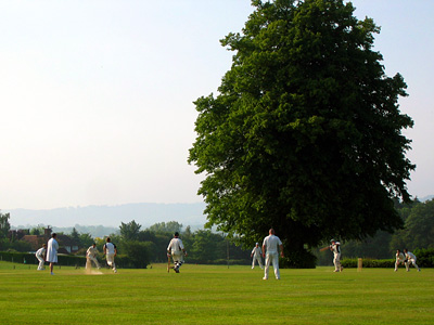 Cricket match on the grounds of Leeds Castle